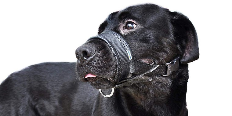 Niteangel Quick Fit Nylon Dog Muzzle